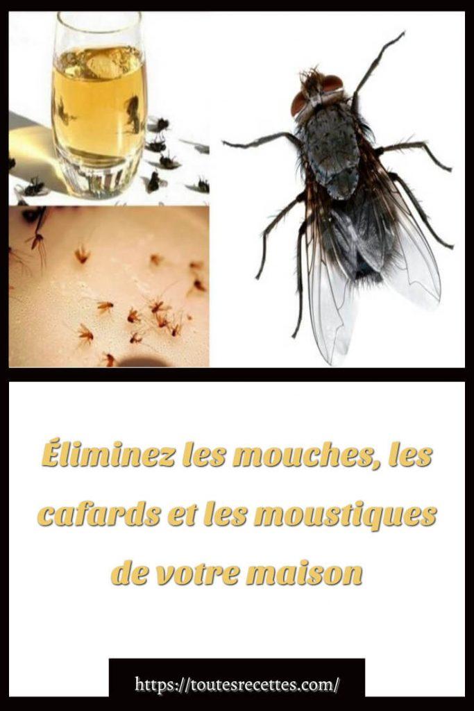 Éliminez les mouches, les cafards et les moustiques