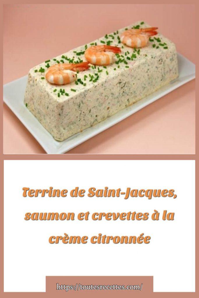 Comment préparer le Terrine de Saint-Jacques, saumon et crevettes à la crème citronnée